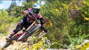 Bulldog and Blinky Ride Epic Te Ranga Downhill